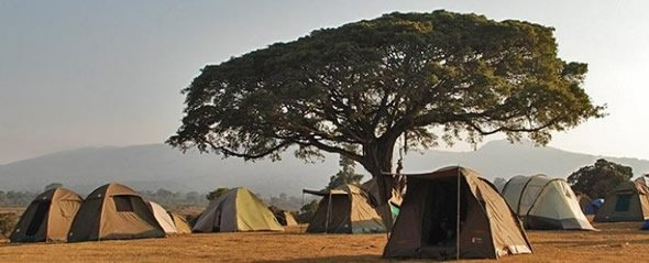 Camping Safari Serengeti