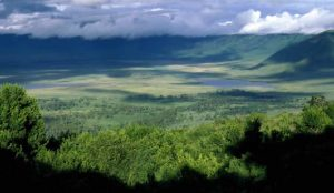Ngorongoro Safari, Lake Manyara and Tarangire 4 days