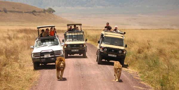 Tanzania Safari Vacation