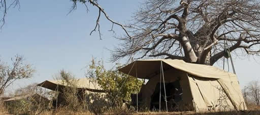 3 Days Budget Camping Safari Tarangire, Ngorongoro Crater, Lake Manyara