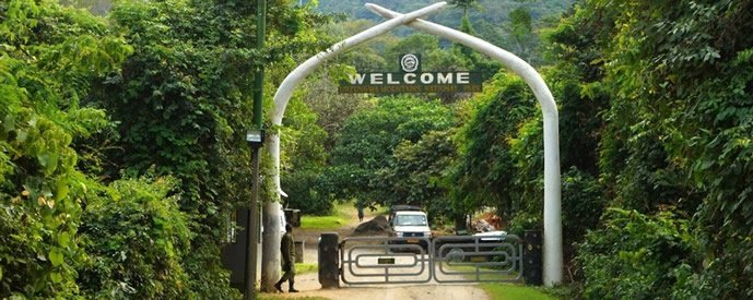 4 Days Udzungwa Mountains Trekking Safari